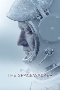 Spacewalk (2017)